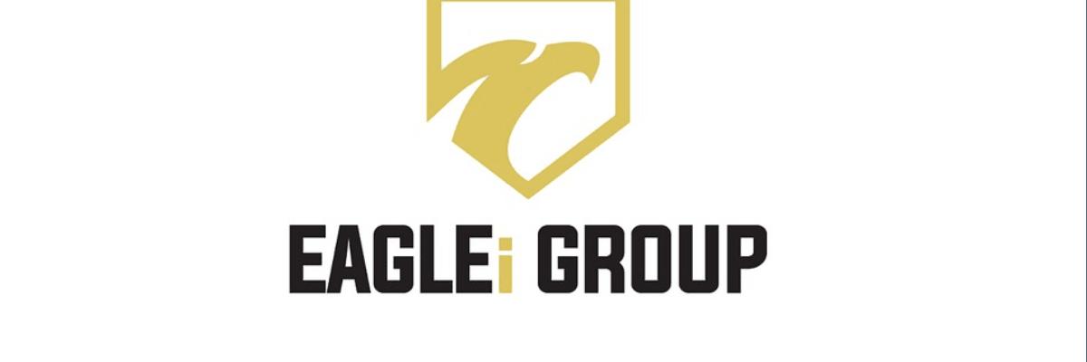 The EAGLEi Group